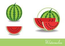 Wassermelonenillustrationsvektor Lizenzfreie Stockfotografie