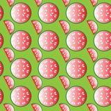 Wassermelonenmuster Lizenzfreie Stockfotografie
