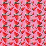 Wassermelonenmuster Stockbild