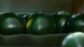 Wassermelonenreiniger stock video footage