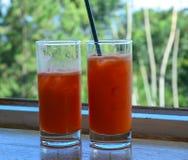 Wassermelonensaft in zwei Glasflaschen lizenzfreies stockbild