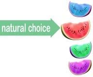 Wassermelonenscheibe, kein GMO-Wahlkonzept Geänderte Farben des Fruchtfleisches Vektorillustration eco Auswahl Lizenzfreie Stockfotos