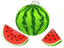 Wassermelonenvektorillustration lizenzfreies stockfoto