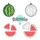 Wassermelonenvektorsatz Illustration auf Weiß, flaches Design der Karikatur Lizenzfreies Stockfoto