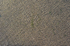 Wassermuster auf dem Zementboden Stockbilder