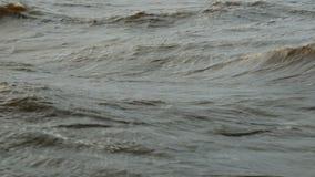 Wasseroberfläche, Naturlandschaft stock video