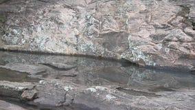 Wasserpfütze auf rosa Granit stock footage