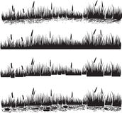 Wasserpflanzen eingestellt vom Schilf oder von den Cattails Schattenbildvektor