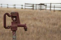 Wasserpumpe auf Grasland Stockfotografie
