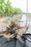 Wasserrad für Fangfischweinlese Stockfotografie