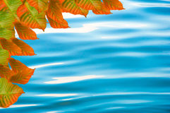 Wasserrahmen Lizenzfreies Stockbild