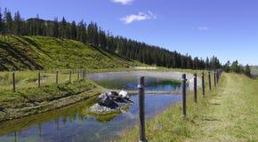 Wasserreservoir in den Bergen Lizenzfreie Stockfotografie