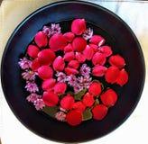 Wasserschüssel mit den Blumenblumenblättern Stockbild