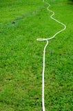 Wasserschlauch Stockfoto