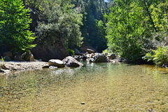 Wasserschlucht in Korsika Stockfoto