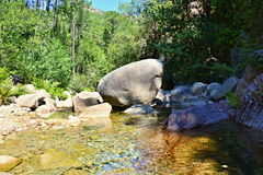 Wasserschlucht in Reise Korsikas Europa Lizenzfreies Stockfoto