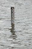 Wasserskala Stockfotos