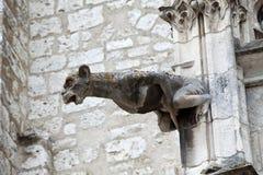 Wasserspeier auf Kathedrale des Saint Louis in Blois Lizenzfreie Stockfotos