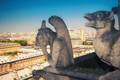 Wasserspeier auf Notre- Damekathedrale, Paris stockbilder
