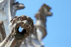 Wasserspeier und Skulpturen im Hintergrund Lizenzfreie Stockfotos