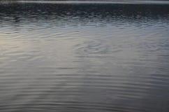 Wasserspiegel des Sees Süd-Böhmen Lizenzfreies Stockbild