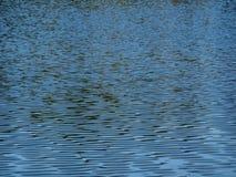 Wasserspiegel des Teichs Stockbilder
