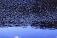 Wasserspiegel, Wasser in der Bewegung Reflektierte Struktur der Umgebungen wird durch die Bewegung des Wassers verzerrt Abstrakte Stockfotografie