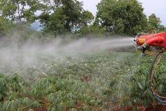 Wasserspray zur Manioka stockbilder