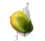 Wasserspritzen mit der Mango lokalisiert Stockfotos