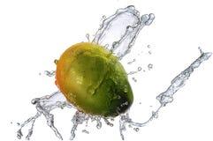 Wasserspritzen mit der Mango lokalisiert Lizenzfreie Stockfotografie