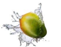 Wasserspritzen mit der Mango lokalisiert Stockfotografie