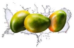 Wasserspritzen mit der Mango lokalisiert Lizenzfreies Stockfoto