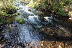 Wasserströme in McArthur-Burney fällt in Nationalpark Lassens vulkanischen ` s alpinen Wald Stockfotos