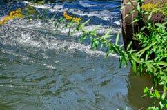 Wasserströme vom Rohr in den Fluss Stockfotografie