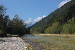 Wasserstrom im Wald lizenzfreie stockbilder