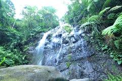 Wasserstromsenkrechte auf dem Felsen stockfoto