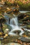 Wassertanz des Lebens lizenzfreie stockfotos