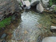 Wasserteich Lizenzfreies Stockfoto