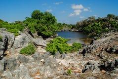 Wasserteich innerhalb Savu-Insel Lizenzfreie Stockfotografie
