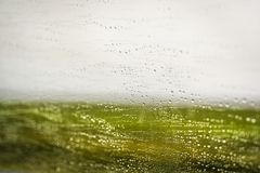 Wassertröpfchen auf der Windschutzscheibe eines Autos beim Fahren in Grün Stockfotos