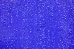 Wassertropfen auf dunkelblauem Hintergrund Stockfoto