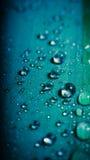 Wassertropfen auf einem Blatt Stockbilder