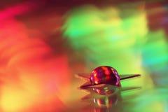 Wassertropfen auf einem kleinen Stern und Reflexion vom Spiegel Stockbilder
