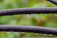 Wassertropfen auf einem schwarzen elektrischen Draht stockfotos