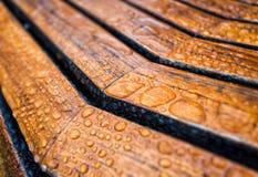 Wassertropfen auf einer Holzbank Lizenzfreies Stockfoto