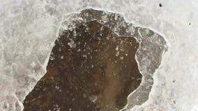 Wassertropfen auf Eis stock footage