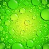 Wassertropfen auf grüner Oberfläche Stockbilder