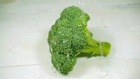 Wassertropfen, die auf Brokkoli tropfen Langsame Bewegung stock footage