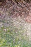 Wassertropfen von einer Berieselungsanlage, die sprüht, um im Garten zu arbeiten Lizenzfreies Stockfoto