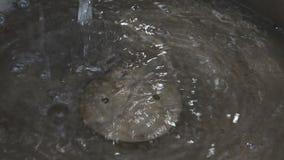 Wassertropfennahaufnahme stock video footage